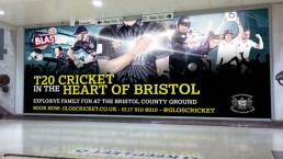 Grand Central Gloucestershire County Cricket 2015 T20 Campaign 48 sheet billboards